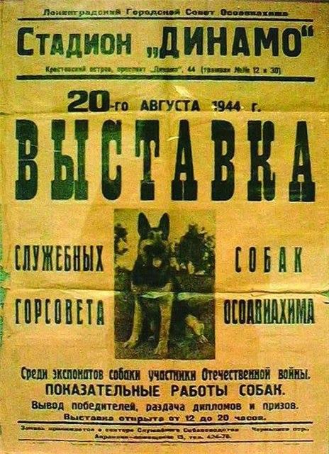 Выставка ленинград